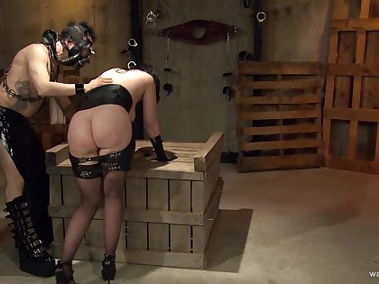 Hardcore torture prizefight in all directions a large ass brunette housewife